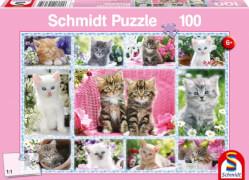 Schmidt Spiele Puzzle Katzenbabys 100 Teile